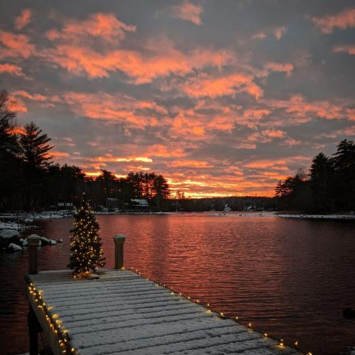 Christmas tree sunset
