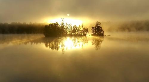 dawn in fall