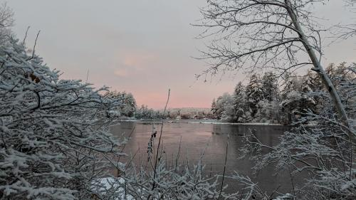 early freeze