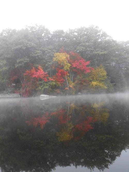 fall-mist