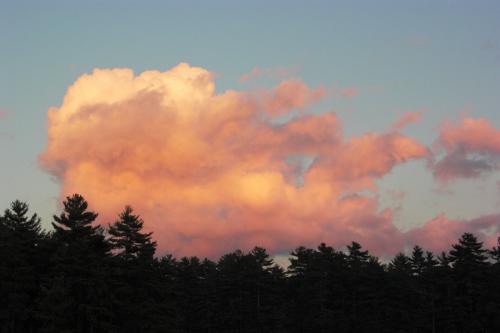 pink-cloud