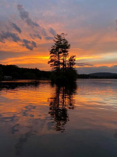 sunset with pine tree island
